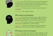 Education: Brain / by Toni Krasnic
