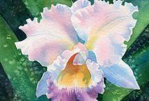art/watercolor flowers / by Tisha Sheldon