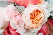 Wedding Bouquets + Florals / Wedding floral inspiration / by Bri Cibene Photography