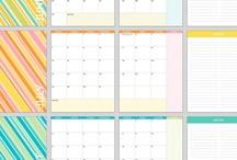 Organizing? / by Theodora Blanchfield