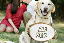 Engagement, Save the date and Invitations / by Brittany Brown