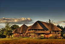 Luxury Africa / by Luxury Trips