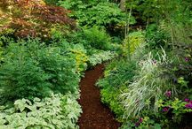 Gardening / by Karen Gaines