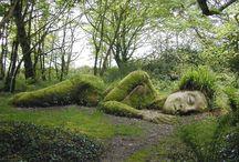 Secret Garden / by Megan Hawley