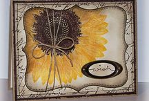 Paper cards - flowers- sunflower / by Susan Harwell Hendrick