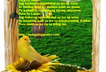 Tagalog Quotes / by Pinoy Favorites