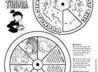 Montessori North America / by C Montessori