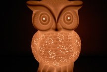 Hoot Hoot! Owlssss! / by Shelby Floyd