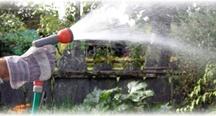 Small Yard/deck gardening / by Lynette