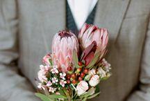 wedding ideas / by Luck Bridal