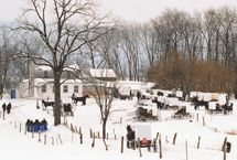 Not Quite Amish: Community / by NotQuiteAmishLiving.com