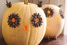 FALL DECORATIONS / by Lisa Coles