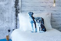 Pets Pics / Show us how creative you are and Canine Cuisine will treat your dog to a luxurious new lifestyle. / by Ideas Magazine