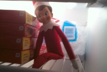 Elf on the shelf / Ideas for where and how to hide the elf  / by Sabrina Hills