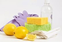 Eco Friendly Cleaning Tips / by Joan Ziegler