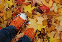 Dreaming of Fall / by Stacy Teet | Kids Stuff World