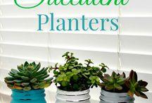 Gardening Goodies / by Jennifer Studebaker