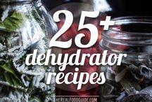 Dehydrator Recipes / by Janet Plank