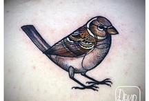 birds / by Nat Jurdeczka