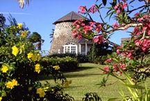 St.Kitts  / by Caribelle Batik St. Kitts