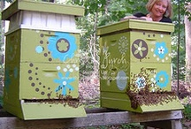 Gardening and Backyard Lover / Backyard honeybee hives / by Your Stamping Teacher
