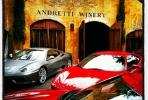 Vines and Wine / by Tony Testarossa