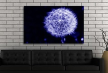 Blue Infusion Art / Quality blue wall art by Infusion. Unique canvas art prints from only £19.99. / by Infusion Art