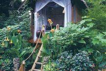 Backyard/garden inspiration / by Cathy Schrauben