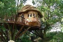 Tree house / Casa na árvore / by RONALDO FONTOURA DE OLIVEIRA