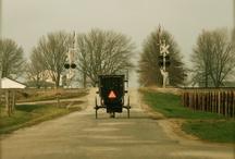 Amish / by Betty Marlar