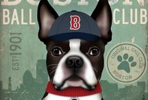 All Things Boston Terrier! / by Kelley Curry