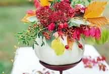 storyboard: autumn & thanks / by The Perfect Petal