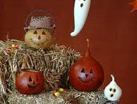 Gourds / by Terri Crossley
