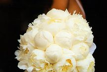 Wedding & Bridal Bouquets / by African-American Brides