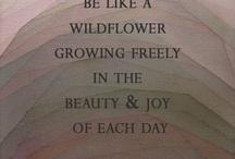 Wildflowers / Beauty is all around us / by Jan Garris
