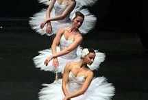 Swan Lake mood board / by Rebecca Hershey