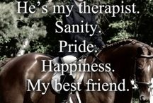 Warp and Hoof - Equine Therapy Quotes / by Jojie Gabot