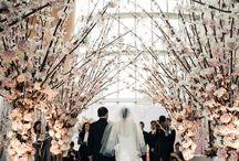 Fairytale Wedding / by Bethany Holt