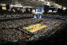 Sporting Events Around Greensboro / by Visit Greensboro