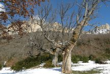 41 Parque  Natural  Sierra  Lókiz  Comarca Turística Urbasa Estella Navarra / 41 Parque  Natural  Sierra  Lókiz  Comarca Turistica Urbasa Estella Navarra / by Casa Rural Urbasa Urederra