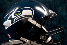 Seattle Seahawks / My football team.  I've been watching them since 1976.  I remember when they used to go to Cheney, WA for camp.  My younger brother and I used to love watching them ;-) The best team ever!! / by Leaundra Ross