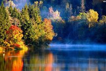 Pure michigan / by Evelyn Frasier