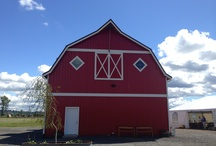 Snohomish Red Barn Events / 8705 Marsh Rd Snohomish, WA 98296 425-754-6165 / by My Snohomish Wedding