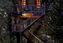 Treehouses / by Stephanie Lackey