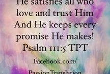 The Passion Translation / http://TPTBible.com  / by Theresa Croft