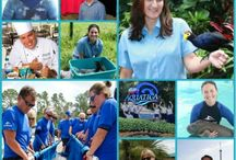 Inside SeaWorld / Dive deeper into our parks through the eyes of the people who make it happen on a daily basis - our dedicated team members! / by SeaWorld