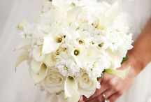Yien / by Dandie Andie Floral Designs