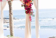 Destination Weddings / by Michelle Barrionuevo-Mazzini