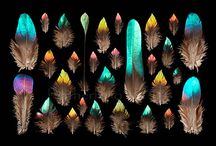 Feathers / by Ruth Siddall