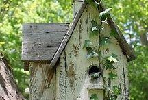 Birdhouses / For Birds / by Victoria Phelps